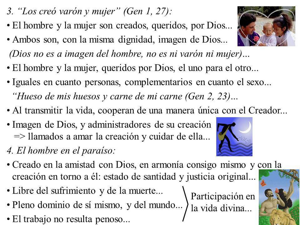 3. Los creó varón y mujer (Gen 1, 27):