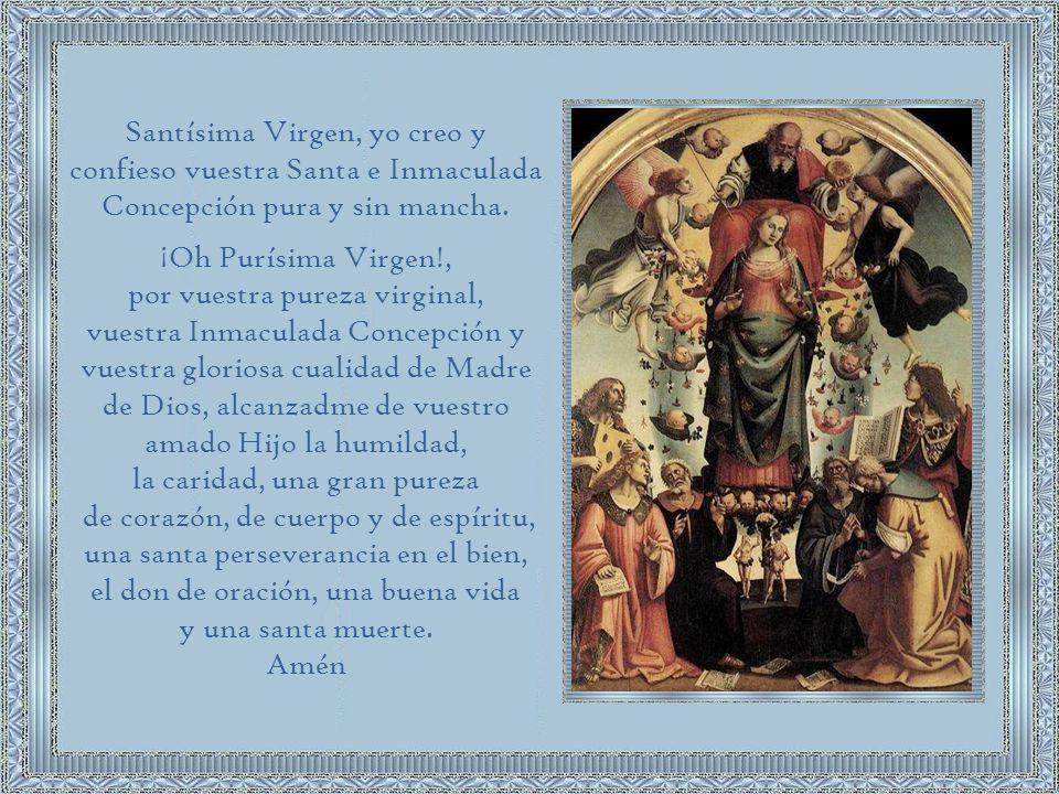 por vuestra pureza virginal, vuestra Inmaculada Concepción y