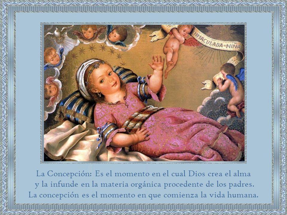 La Concepción: Es el momento en el cual Dios crea el alma