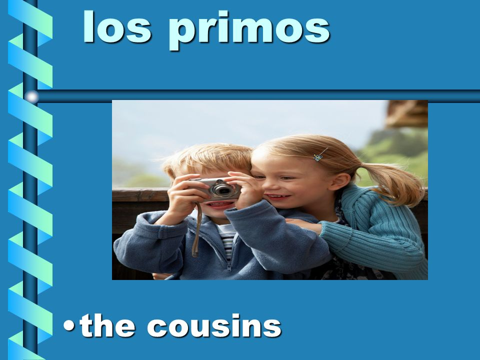 los primos the cousins