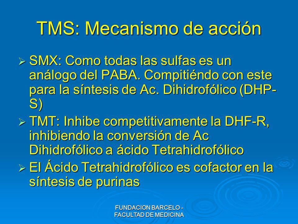 TMS: Mecanismo de acción