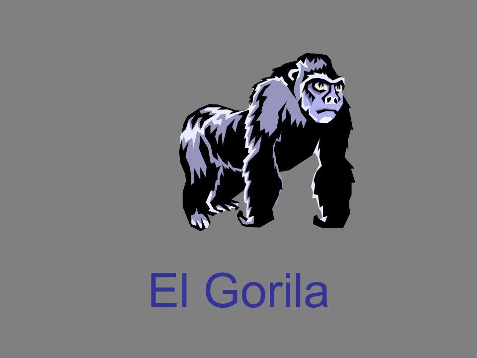 El Gorila