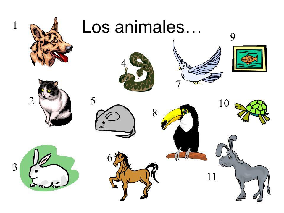 Los animales… 1 9 4 7 2 5 10 8 6 3 11