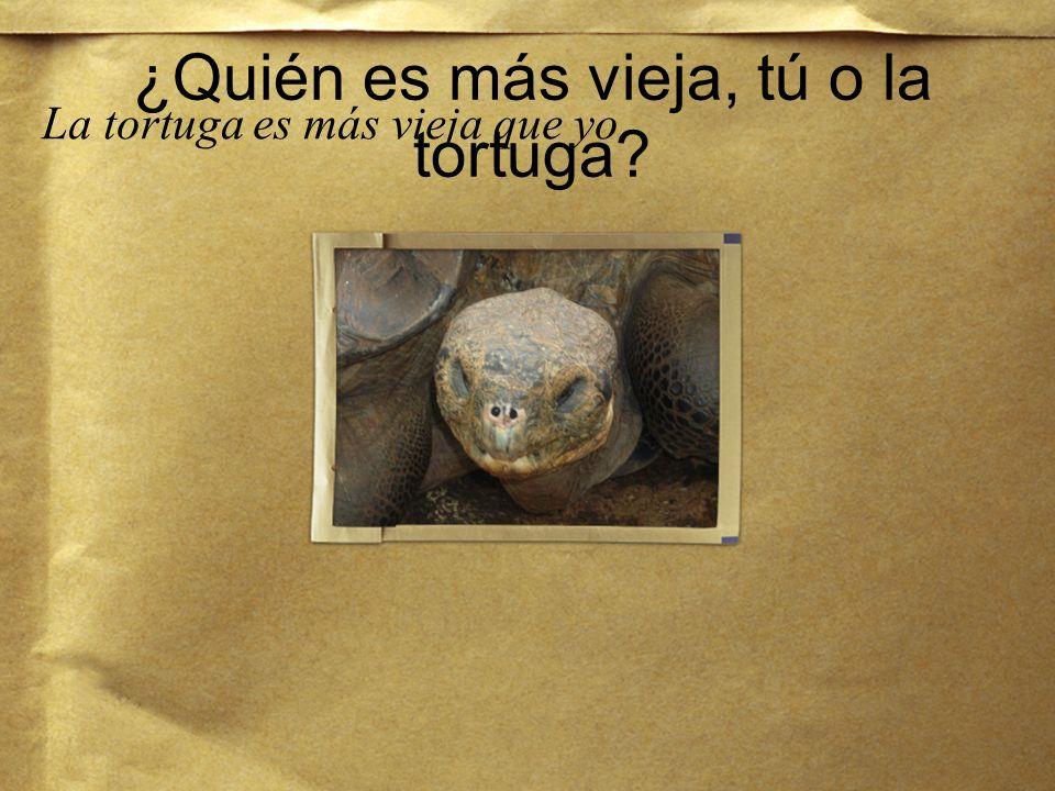 ¿Quién es más vieja, tú o la tortuga