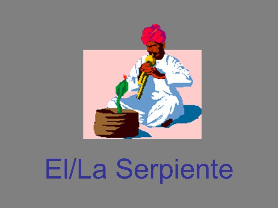 El/La Serpiente