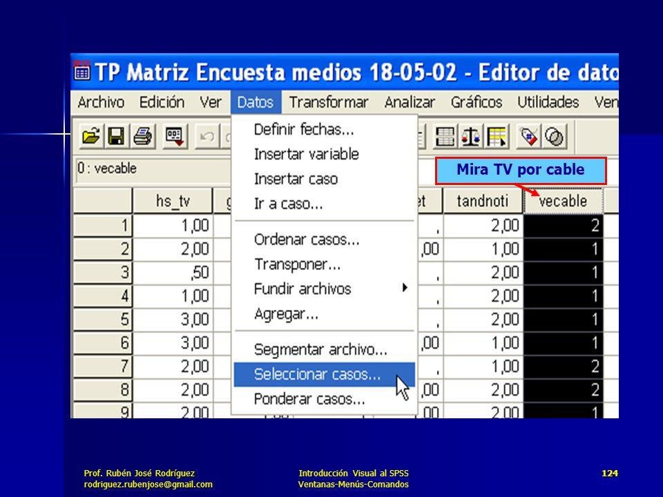 Mira TV por cable Introducción Visual al SPSS Ventanas-Menús-Comandos