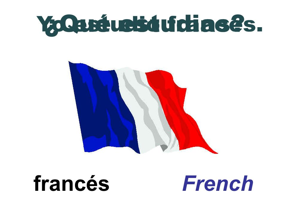 ¿Qué estudias Yo estudio francés. francés French