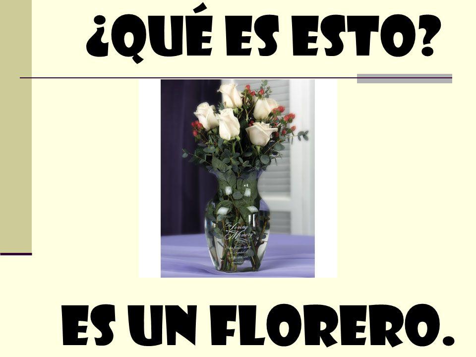 ¿quÉ Es esto Es un florero.