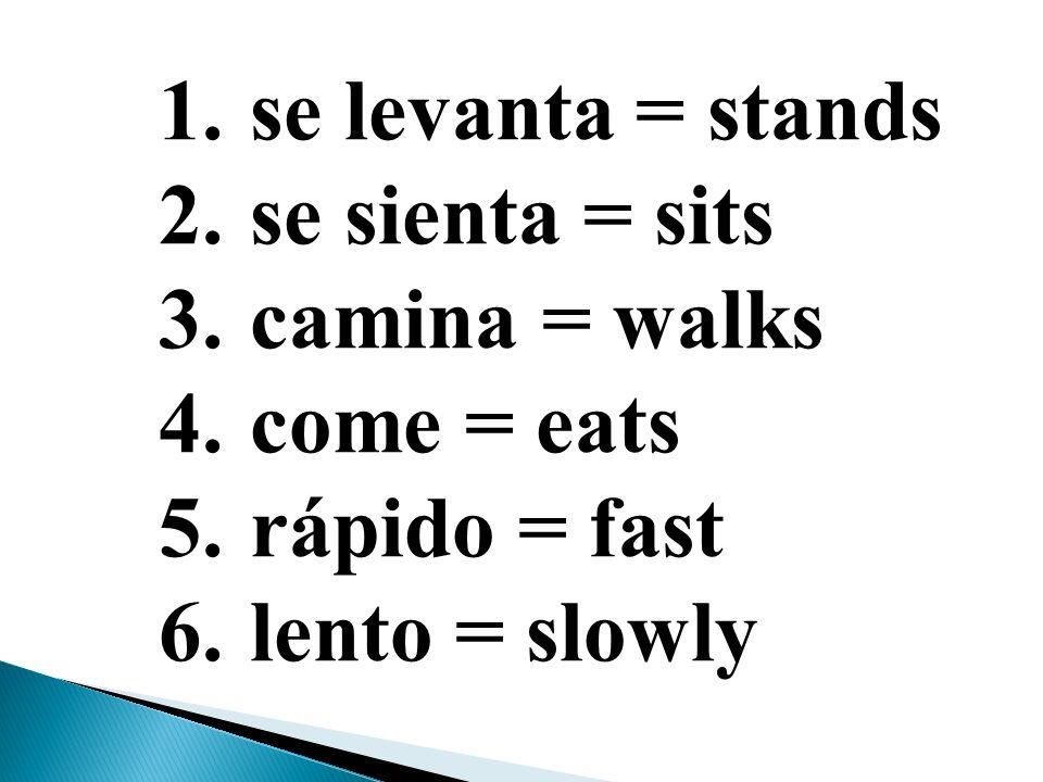 se levanta = stands se sienta = sits camina = walks come = eats rápido = fast lento = slowly