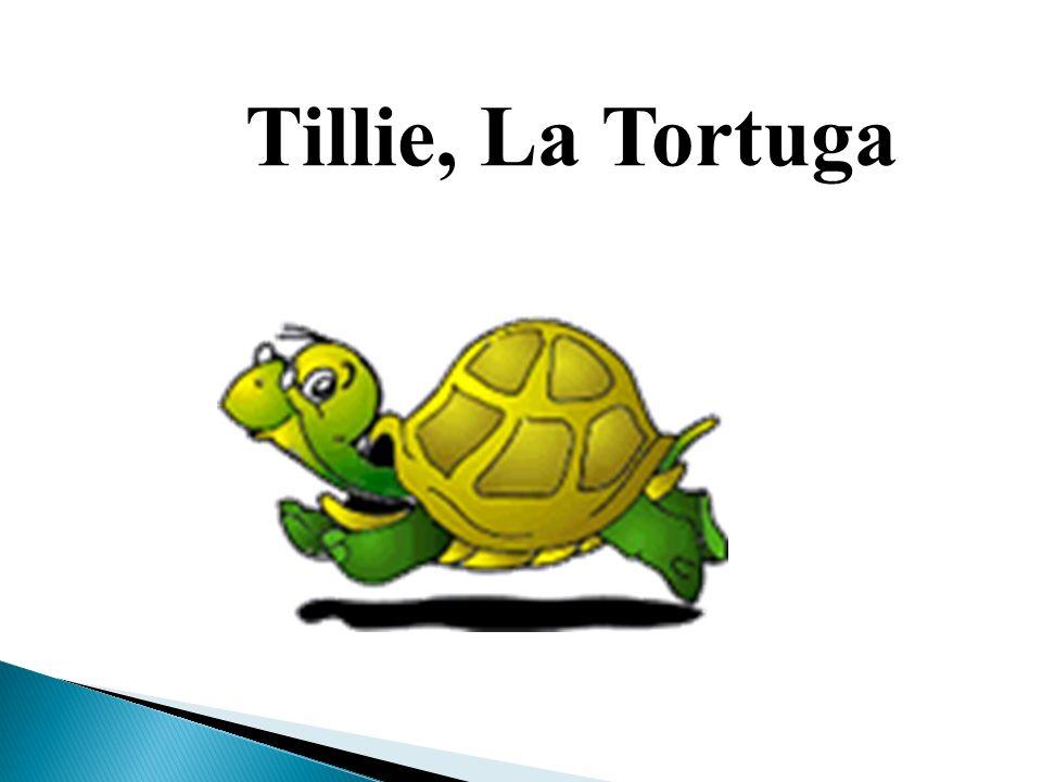 Tillie, La Tortuga La Tortuga La Tortuga La tortuga se llama Tillie.