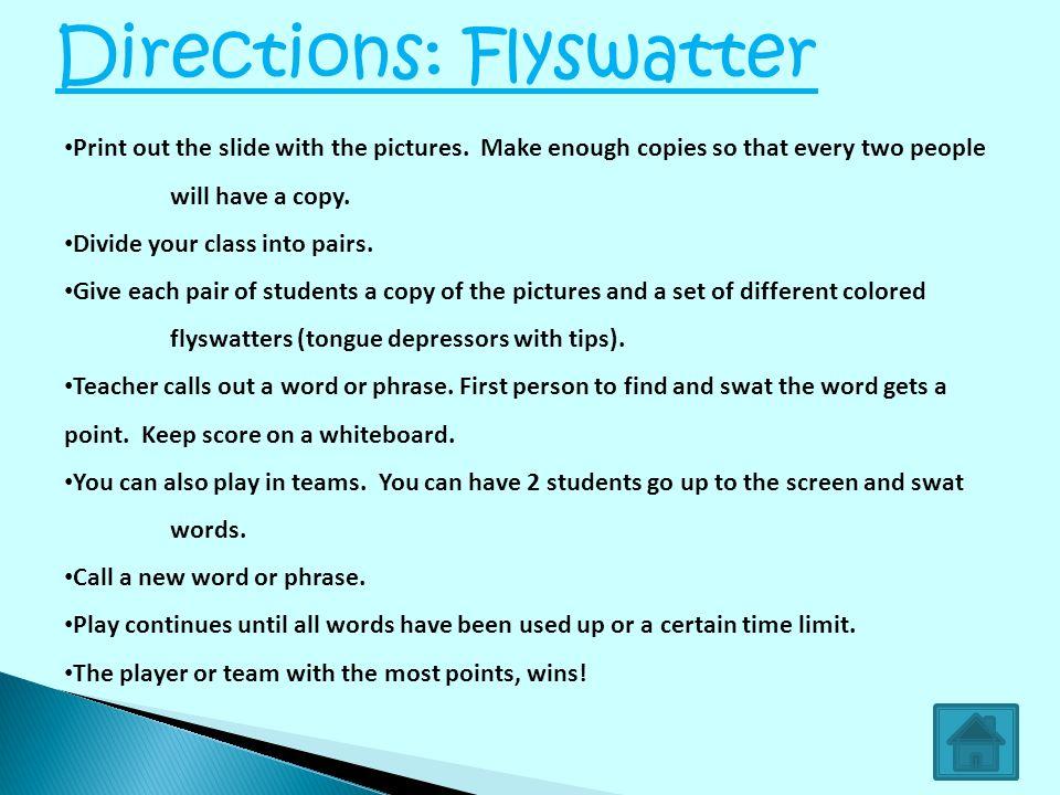 Directions: Flyswatter