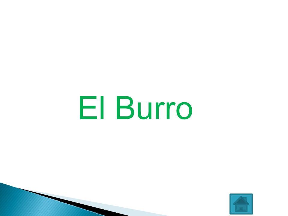 El Burro