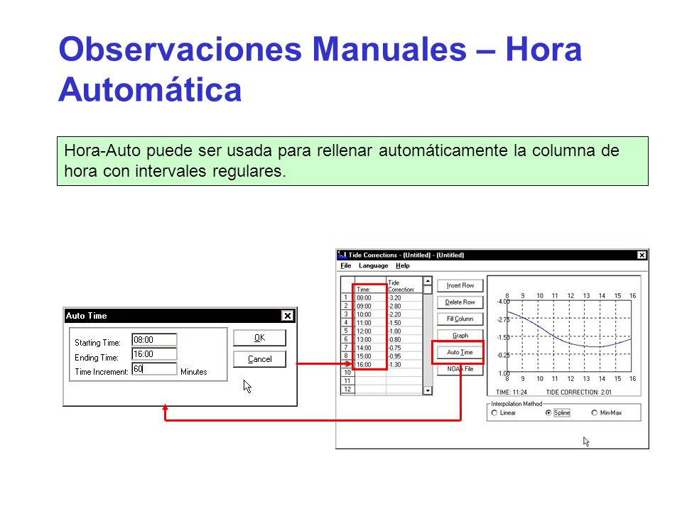 Observaciones Manuales – Hora Automática