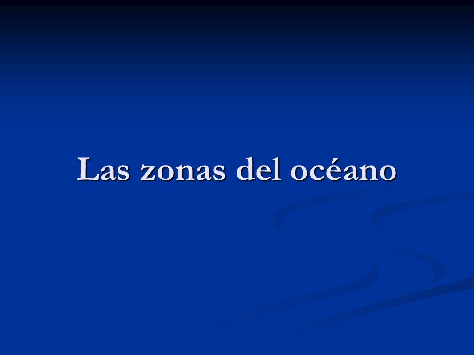Las zonas del océano