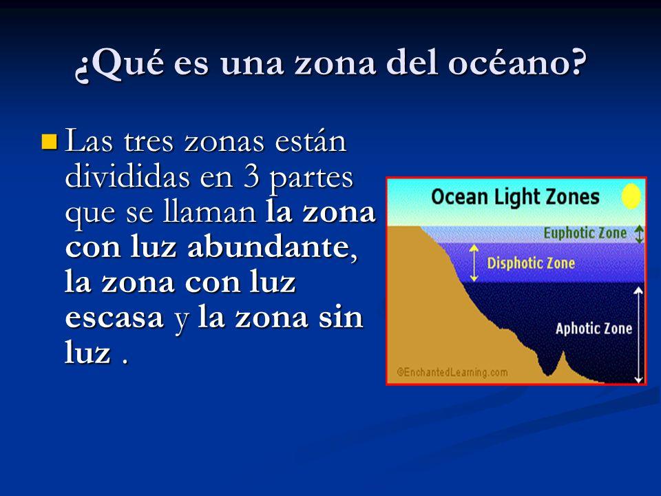 ¿Qué es una zona del océano