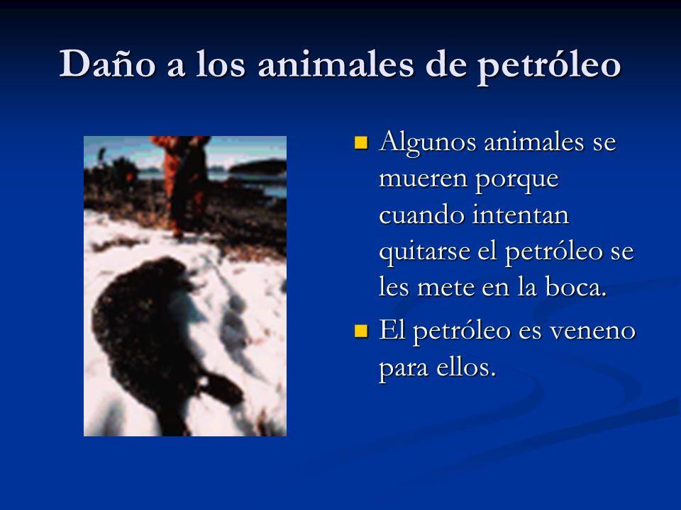 Daño a los animales de petróleo