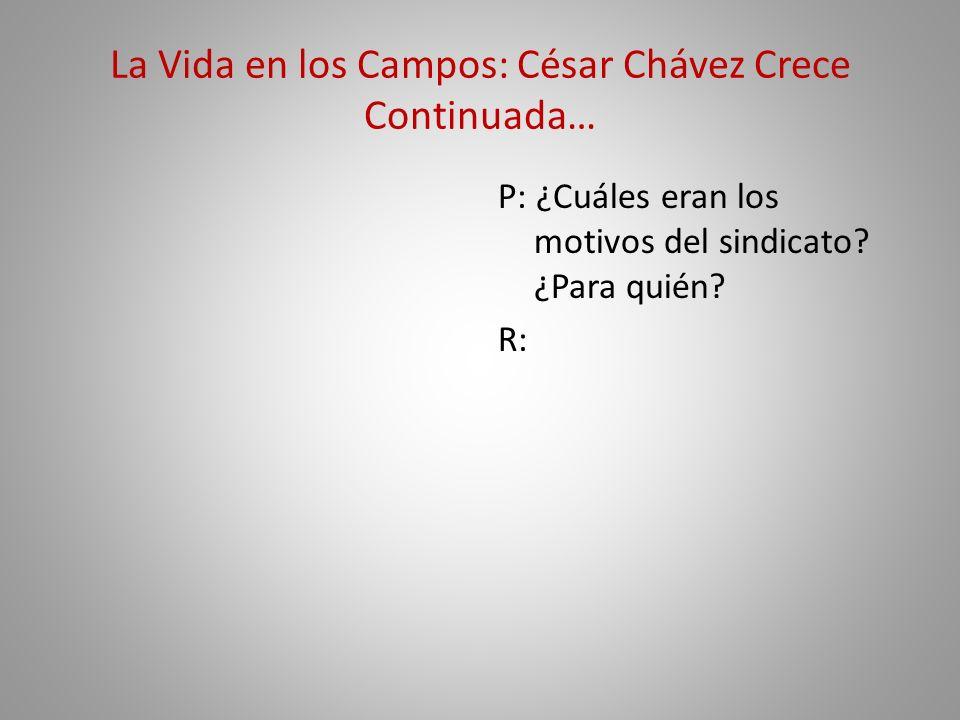 La Vida en los Campos: César Chávez Crece Continuada…
