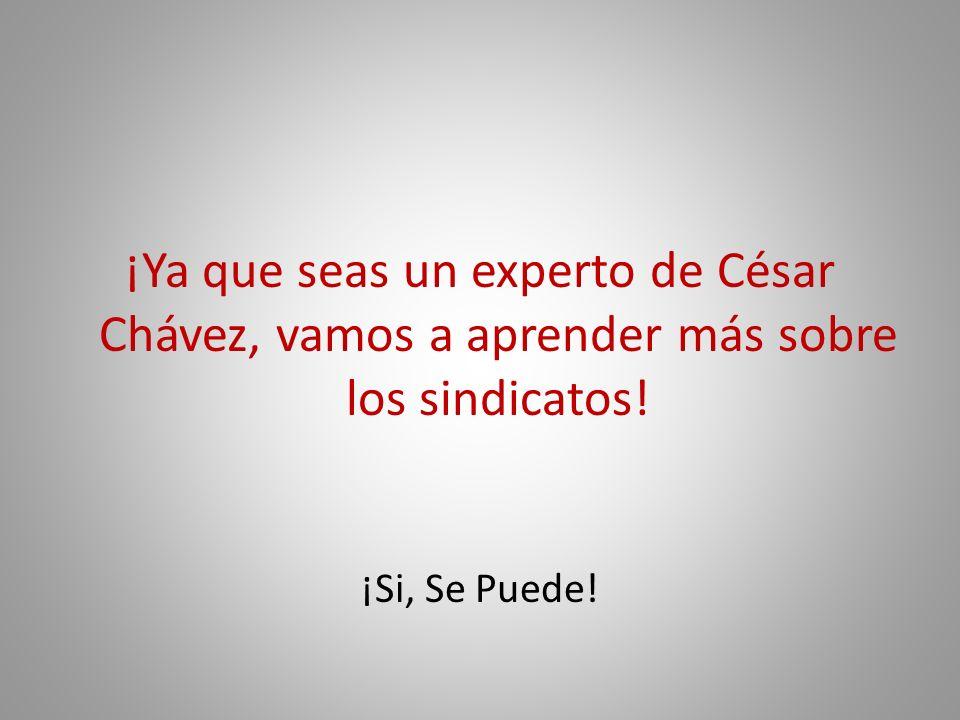 ¡Ya que seas un experto de César Chávez, vamos a aprender más sobre los sindicatos!