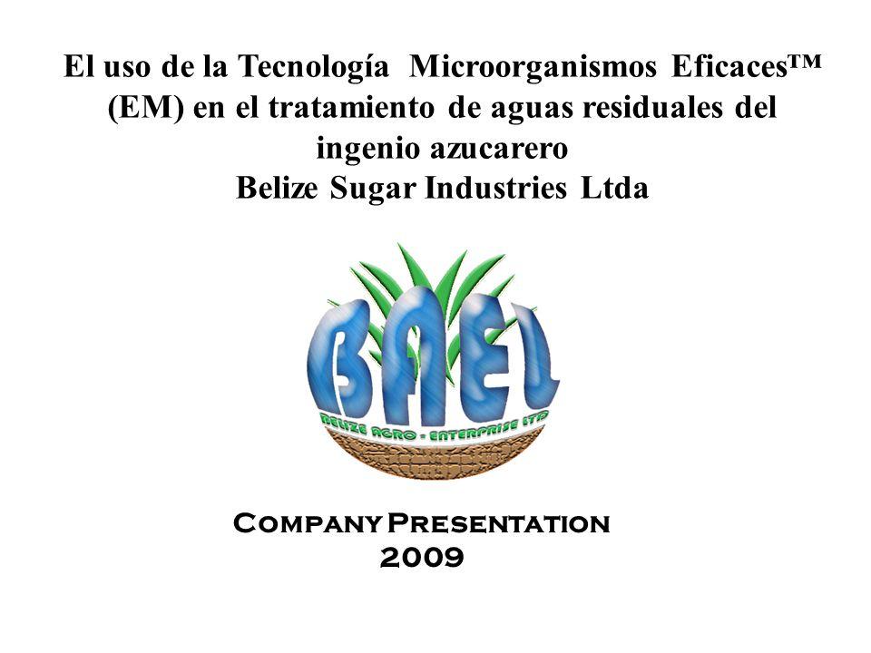 El uso de la Tecnología Microorganismos Eficaces™ (EM) en el tratamiento de aguas residuales del ingenio azucarero Belize Sugar Industries Ltda