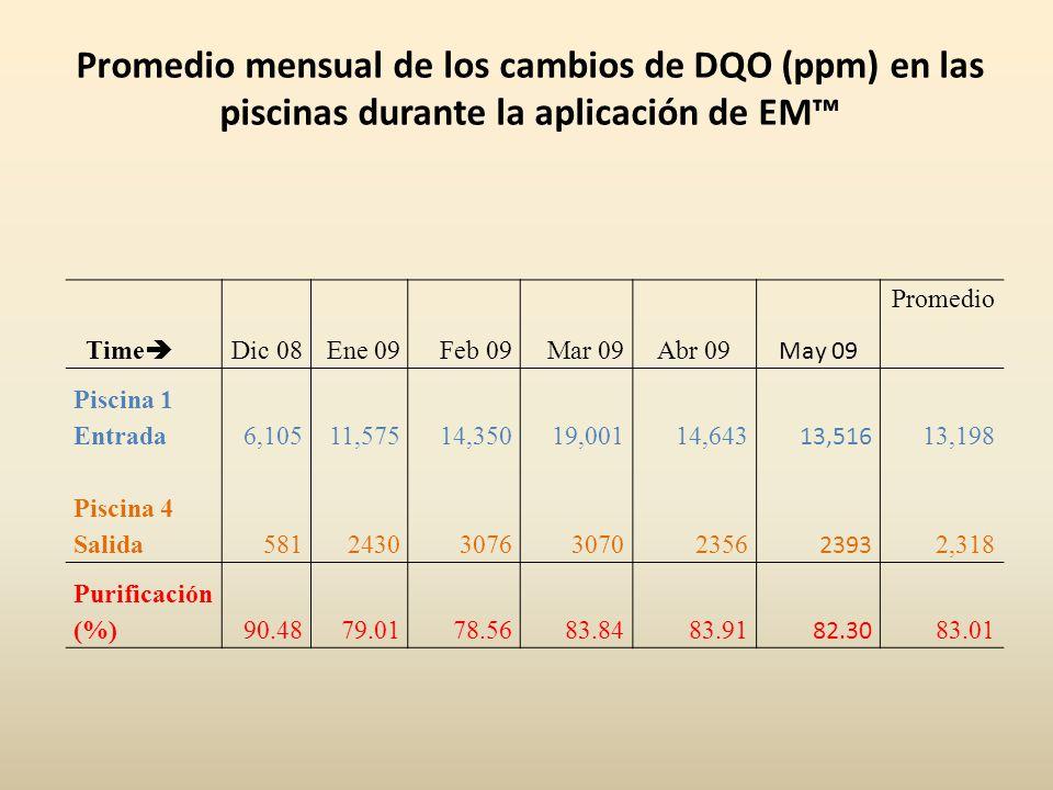 Promedio mensual de los cambios de DQO (ppm) en las piscinas durante la aplicación de EM™