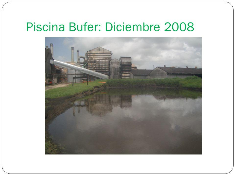 Piscina Bufer: Diciembre 2008