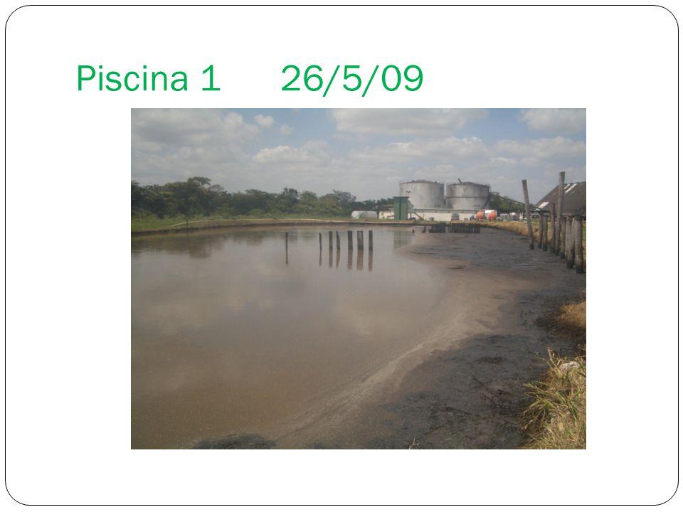 Piscina 1 26/5/09