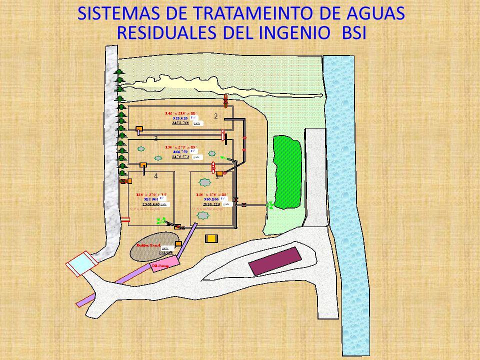 SISTEMAS DE TRATAMEINTO DE AGUAS RESIDUALES DEL INGENIO BSI