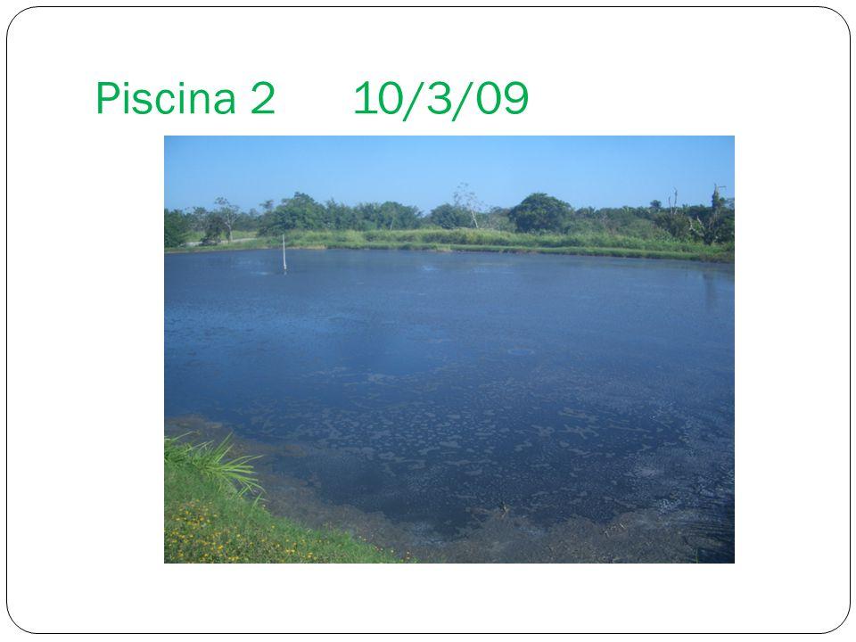 Piscina 2 10/3/09