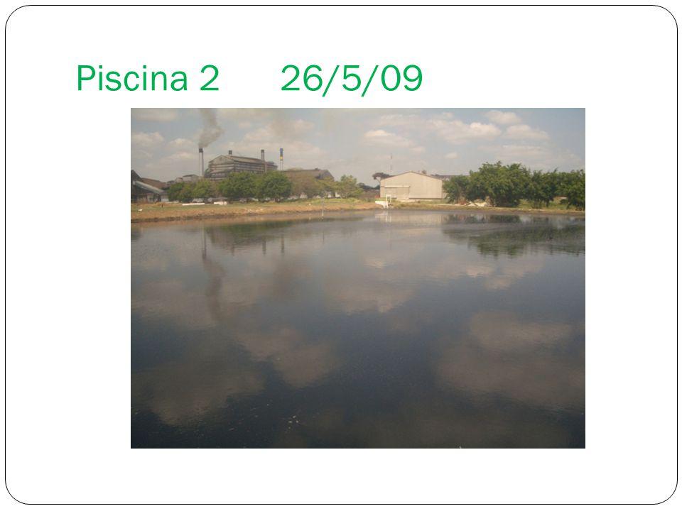 Piscina 2 26/5/09