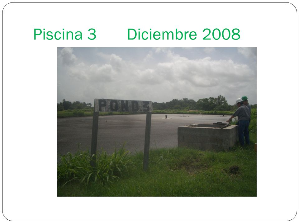 Piscina 3 Diciembre 2008