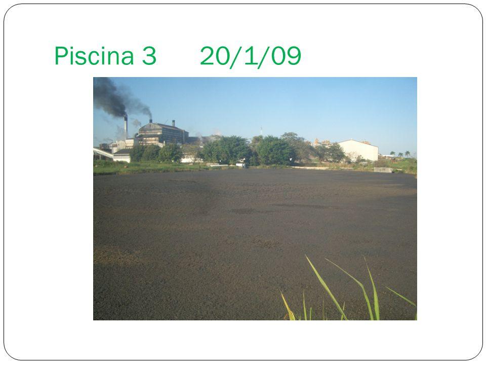 Piscina 3 20/1/09