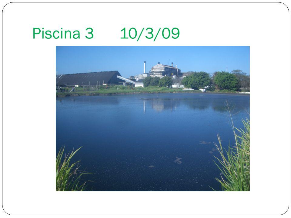 Piscina 3 10/3/09