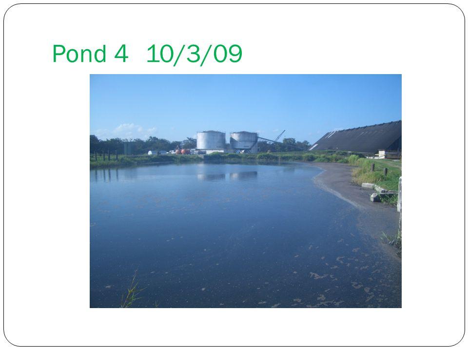 Pond 4 10/3/09