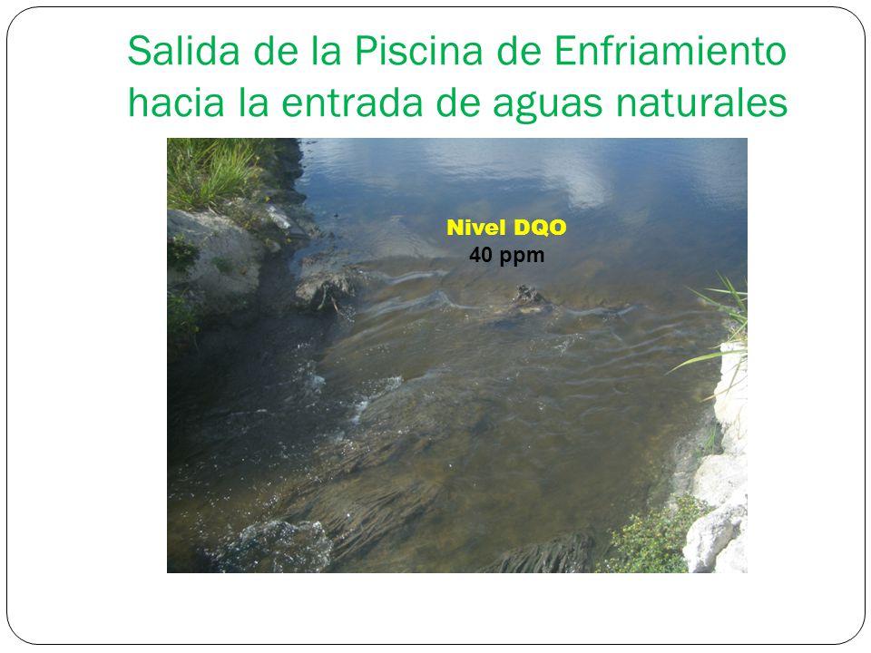 Salida de la Piscina de Enfriamiento hacia la entrada de aguas naturales