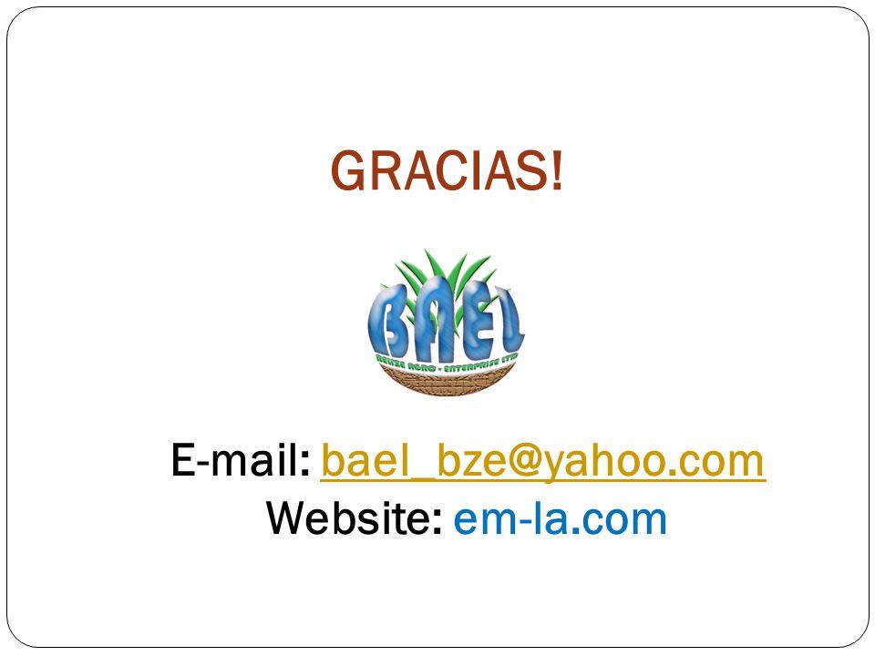 E-mail: bael_bze@yahoo.com
