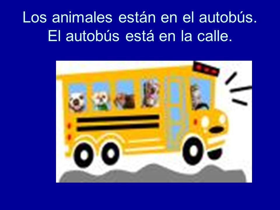 Los animales están en el autobús. El autobús está en la calle.