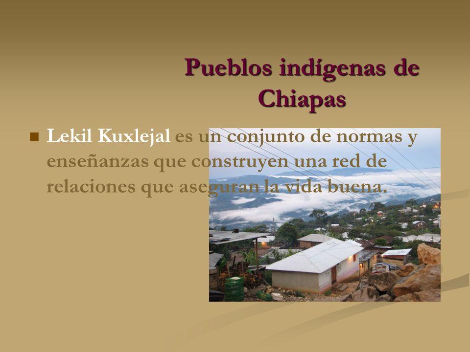 Pueblos indígenas de Chiapas