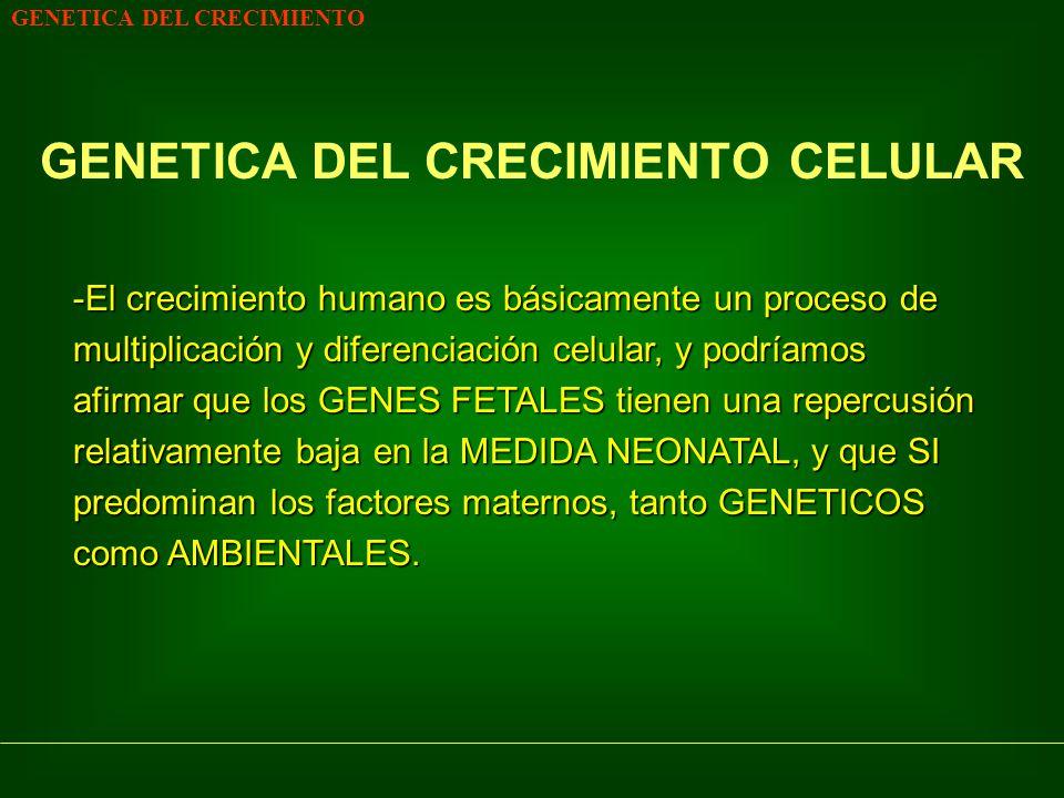 GENETICA DEL CRECIMIENTO CELULAR