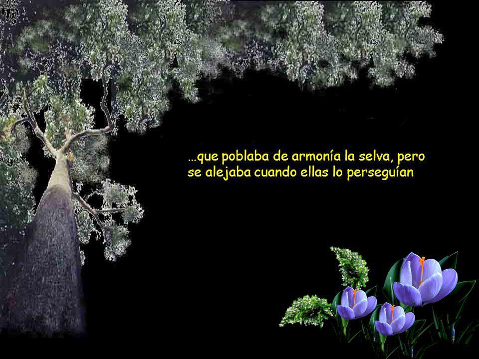 …que poblaba de armonía la selva, pero