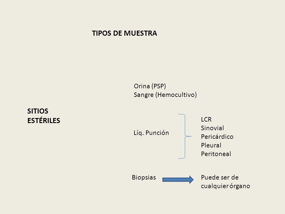 TIPOS DE MUESTRA SITIOS ESTÉRILES Orina (PSP) Sangre (Hemocultivo) LCR