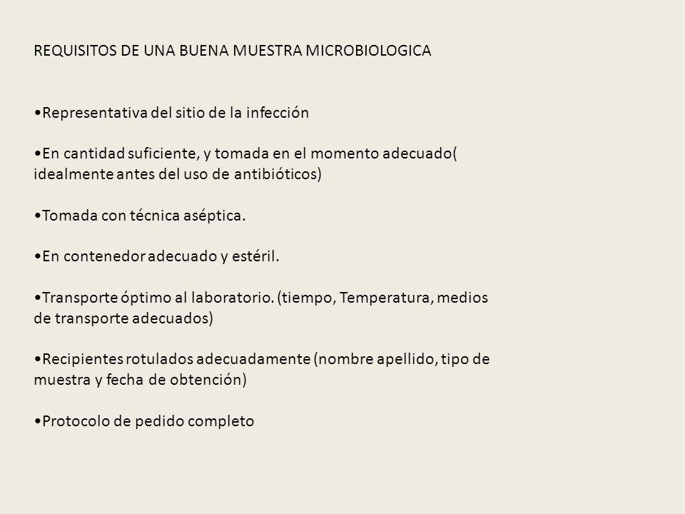 REQUISITOS DE UNA BUENA MUESTRA MICROBIOLOGICA