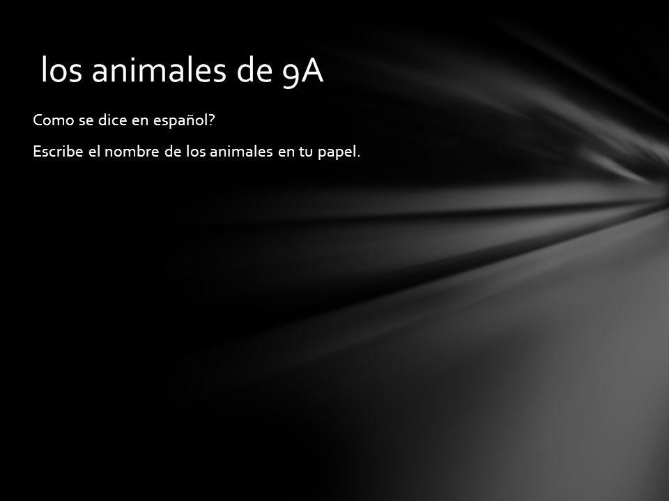 los animales de 9A Como se dice en español Escribe el nombre de los animales en tu papel.