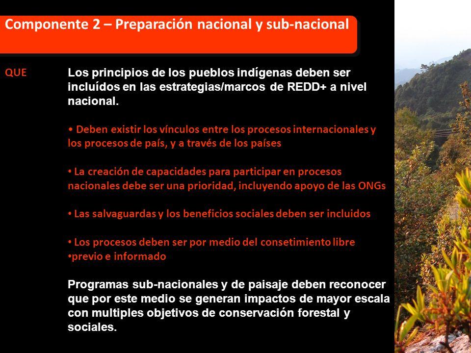Componente 2 – Preparación nacional y sub-nacional