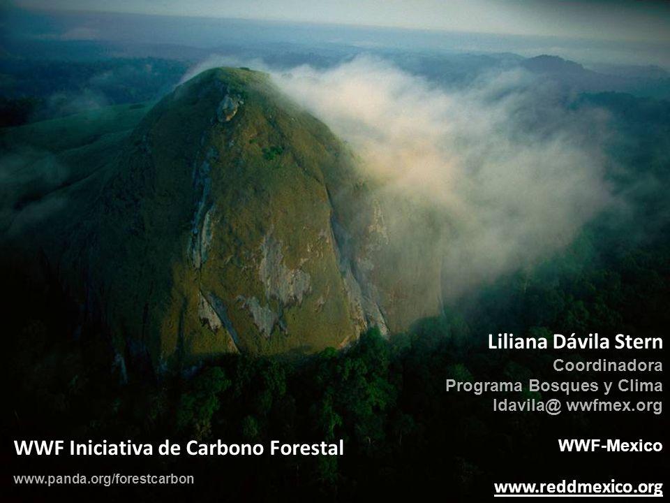 WWF Iniciativa de Carbono Forestal