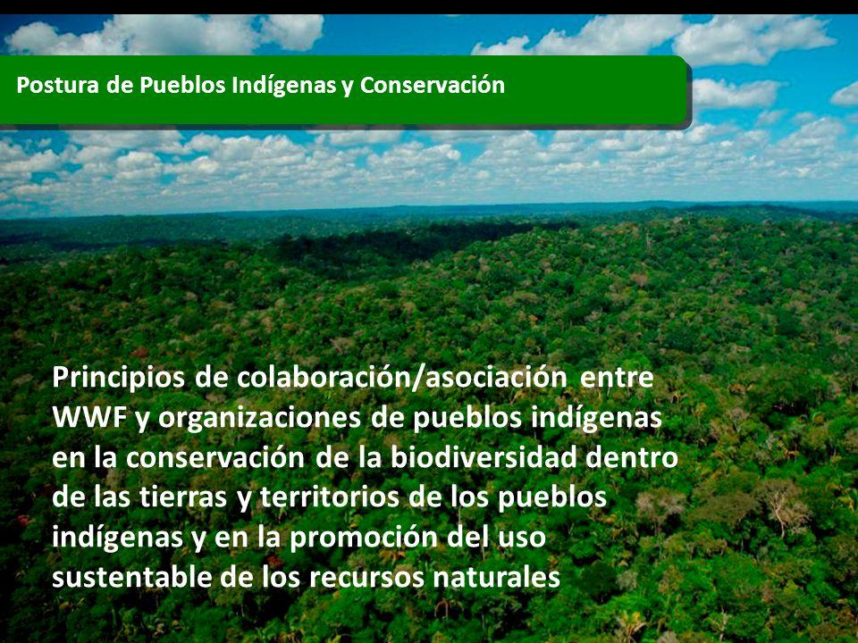 Postura de Pueblos Indígenas y Conservación