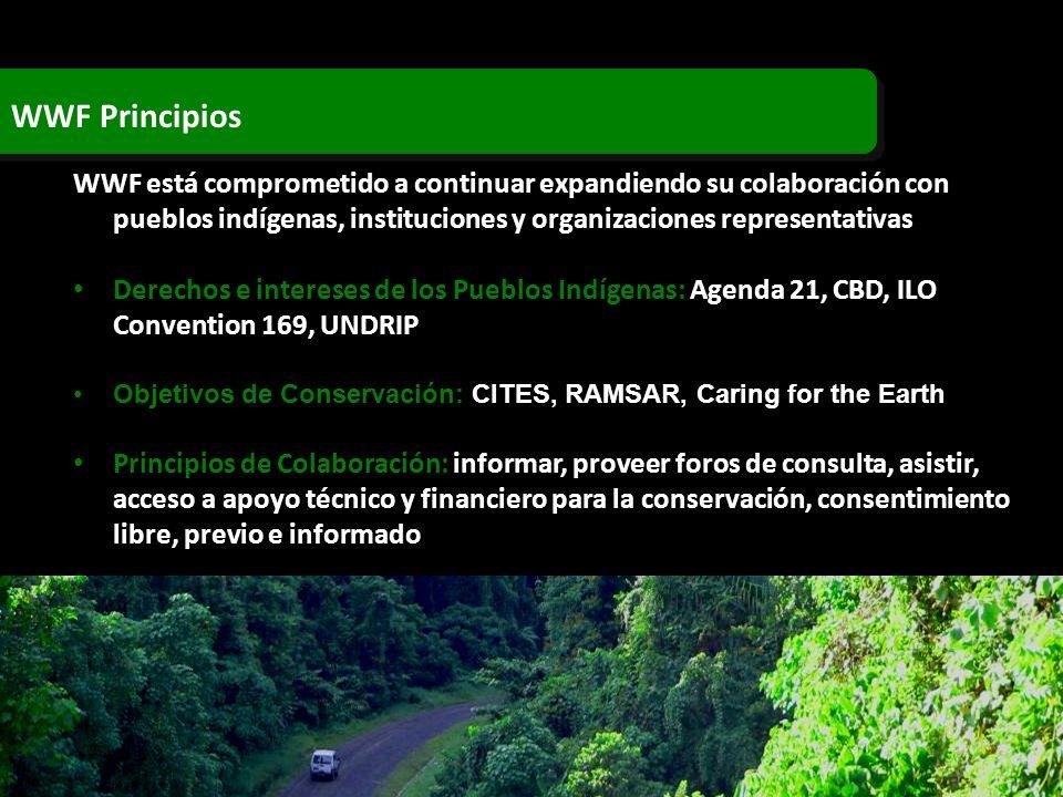 WWF Principios WWF está comprometido a continuar expandiendo su colaboración con pueblos indígenas, instituciones y organizaciones representativas.