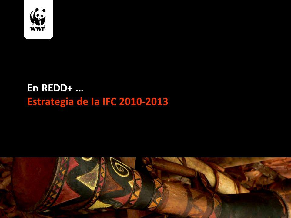 En REDD+ … Estrategia de Ia IFC 2010-2013