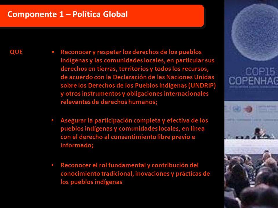 Componente 1 – Política Global