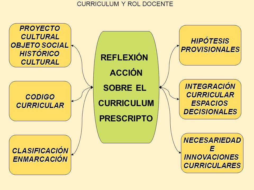 CURRICULUM Y ROL DOCENTE