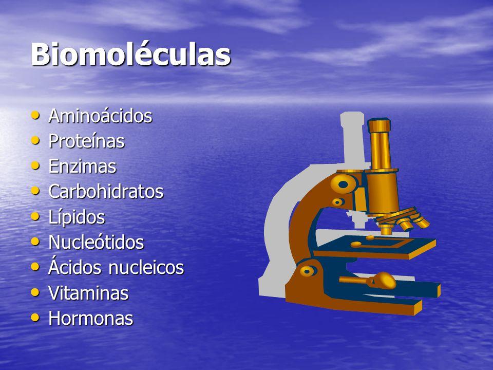 Biomoléculas Aminoácidos Proteínas Enzimas Carbohidratos Lípidos